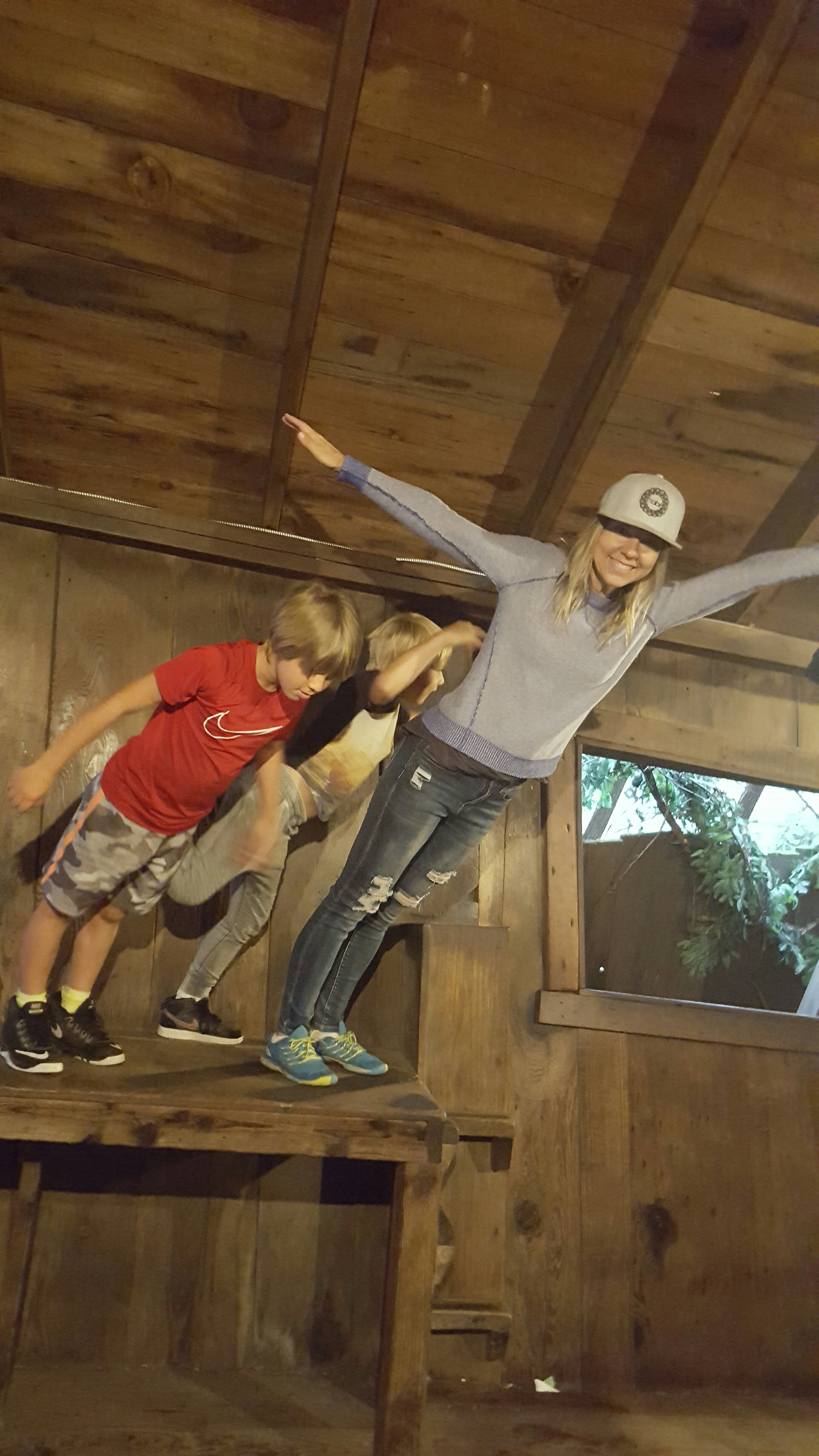 123ed694885 Santa Cruz Mystery Spot... Is It Real?! - What a Fabulous Day